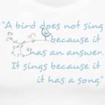 A Bird Does NotSing