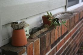 GardenTrinkets