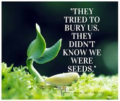 Seeds Quote
