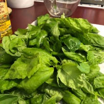 8 Cups of Basil