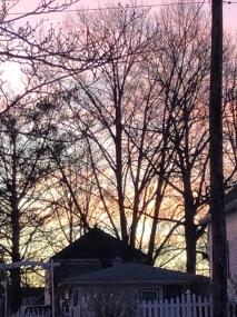 Pink February Sunrise