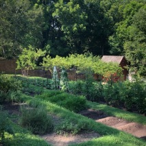Colonial Williamsburg Garden